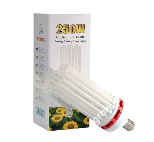 CFL 250w Bloom Trilite Италия фото