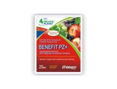 Benefit PZ 25ml купить в Украине фото