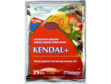 Kendal 25ml купить в Украине фото