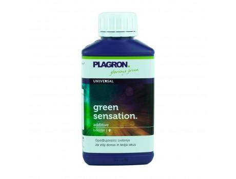 Green Sensation 250 ml Plagron купить в Украине фото