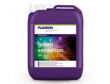 Green Sensation 5 ltr Plagron купить в Украине фото