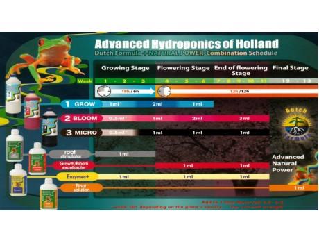 Dutch Formula Bloom 1 ltr розлив Advanced Hydroponics купить в Украине фото